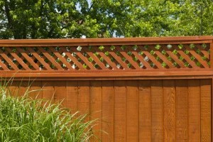 Chainmesh fencing gallery image