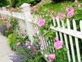Kwikfynd Garden fencing