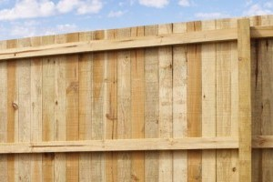 Bamboo fencing gallery image