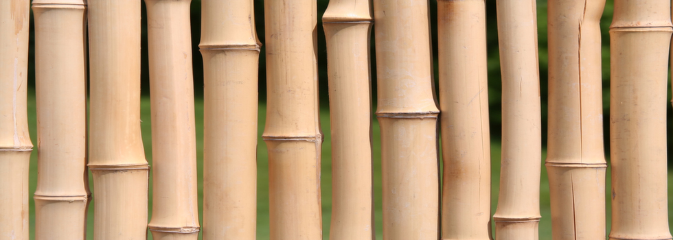 Kwikfynd Bamboo fencing 1
