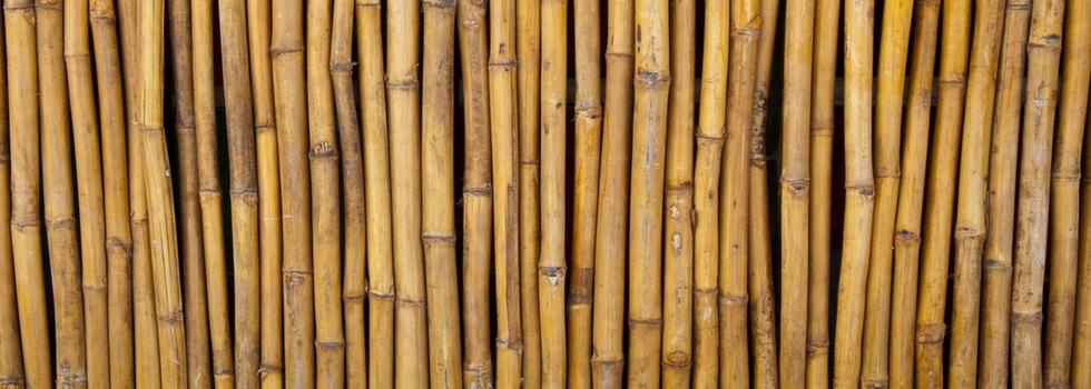 Kwikfynd Bamboo fencing 2