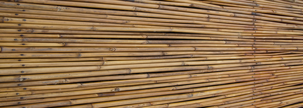 Kwikfynd Bamboo fencing 3