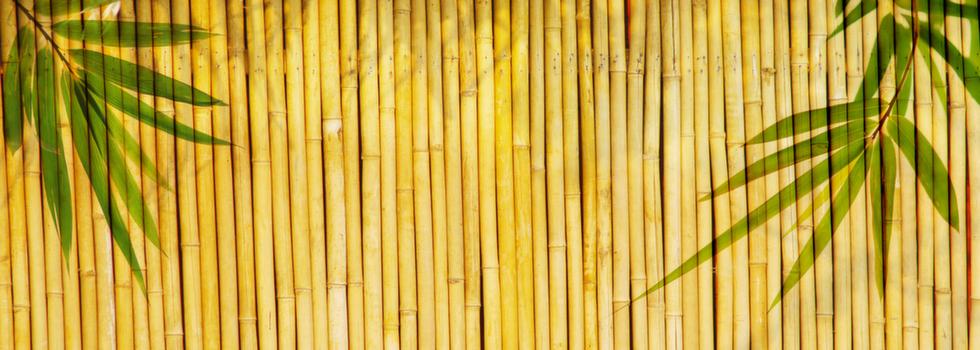 Kwikfynd Bamboo fencing 4