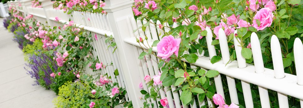Decorative fencing 21