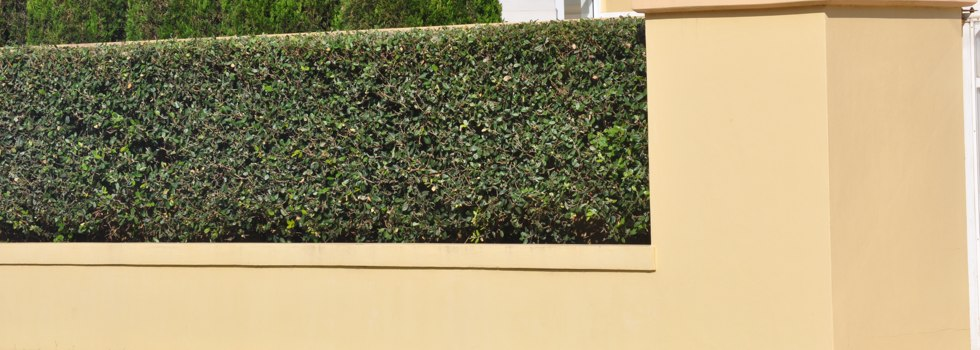 Alumitec Decorative Fencing Ainslie NSW