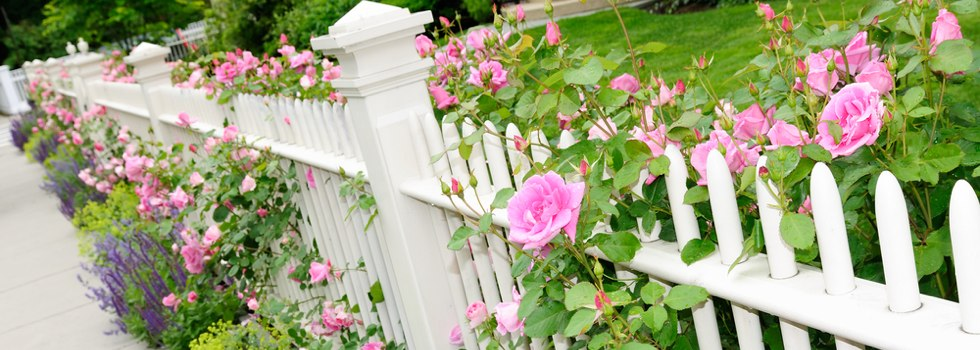 Front yard fencing 21