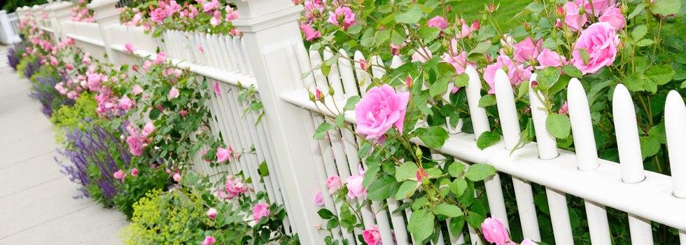 Kwikfynd Garden fencing 33