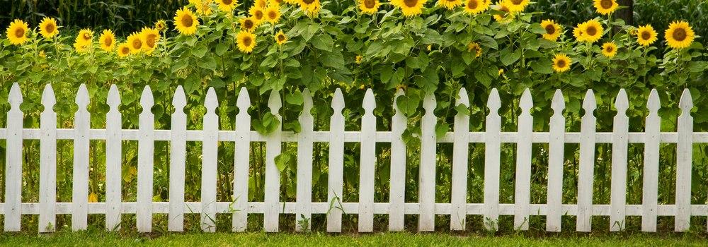 Kwikfynd Garden fencing 36