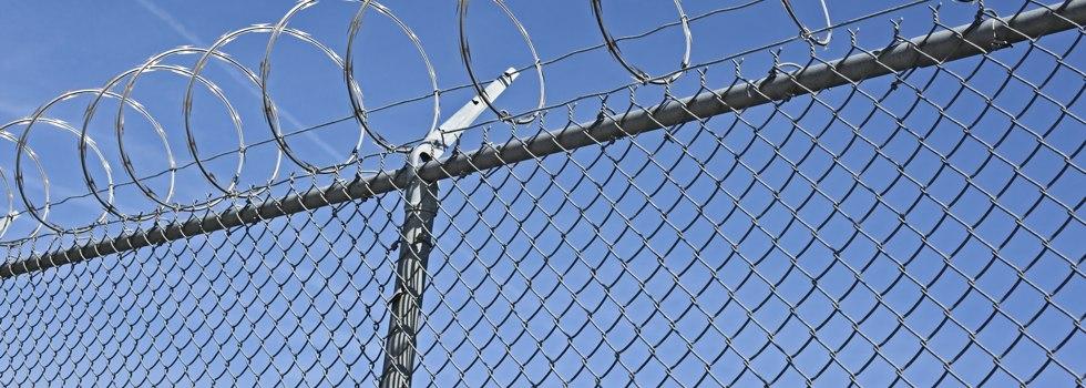 Kwikfynd Mesh fencing 14