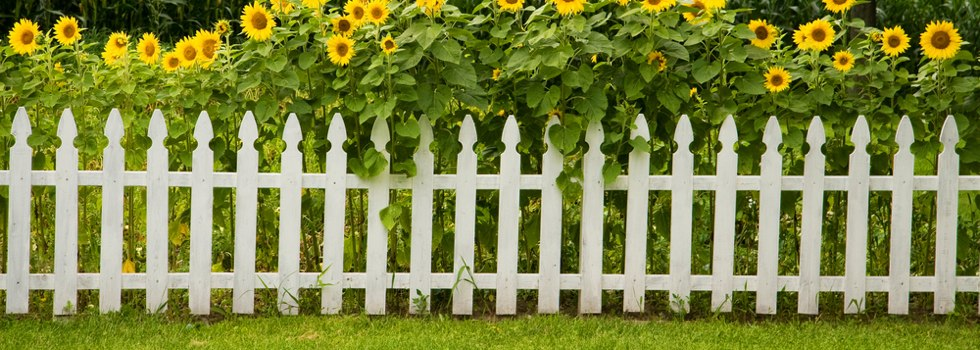 Picket fencing 11,jpg
