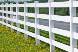 Chainlink fencing gallery image